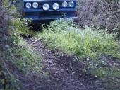 Devon2010_05